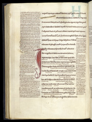 Biblical Text With Marginal And Interlinear Gloss, In A Glossed Leviticus And John